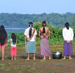 La ingeniosa canoa solar con la que se puede viajar sin petróleo por la selva ecuatoriana