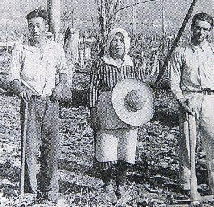 Cómo una novela romántica fue el origen de la migración de japoneses a Colombia