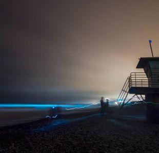 Estados Unidos: el espectacular fenómeno que tiñe de azul fluorescente el mar de San Diego