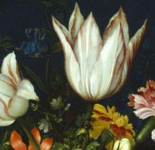 Cómo fue la crisis de los tulipanes, la primera gran burbuja financiera de la historia mundial
