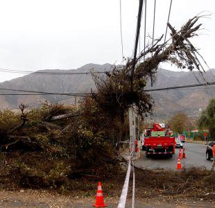 Viento derriba árboles en Santiago