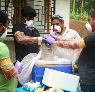 OMS advierte sobre el peligroso virus Nipah: no tiene cura y ha matado a 17 personas en la India