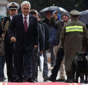 """[VIDEO] Piñera firma proyecto de Ley Antiportonazo: """"Ya son demasiadas muertes"""""""