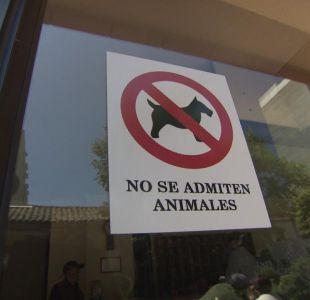 [VIDEO] Los alcances del fallo que permite mascotas en edificios