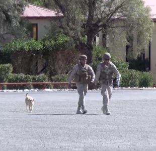 [VIDEO] Ejército expulsó a 23 miembros tras abusos