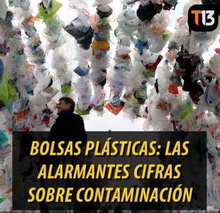[VIDEO] Bolsas plásticas: Las alarmantes cifras sobre contaminación