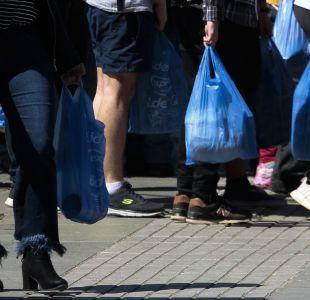 """[VIDEO] Ministra Cubillos y prohibición de bolsas plásticas: """"No es una exigencia tan grande"""""""