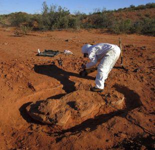 [FOTOS] Descubren en Argentina dinosaurio gigante de más de 200 millones de años