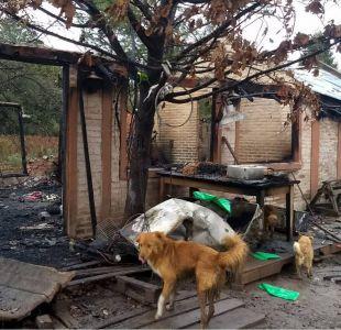 Argentina: Mueren más de 50 perros en incendio en un refugio de animales