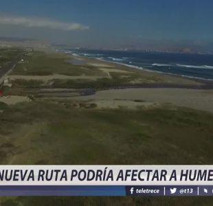 [VIDEO] Nueva ruta podría afectar a humedal en Arica