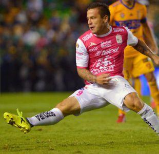 Así se refuerza el fútbol chileno: El 70% de las contrataciones eran suplentes en sus clubes