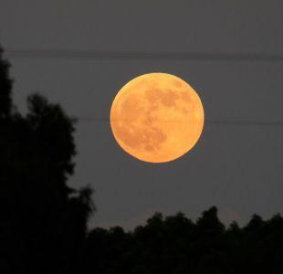 Eclipse lunar: las espectaculares imágenes de cómo se está viendo en el mundo el fenómeno