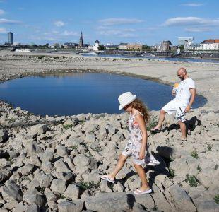 7 llamativos efectos secundarios de la ola de calor que bate récords en Europa