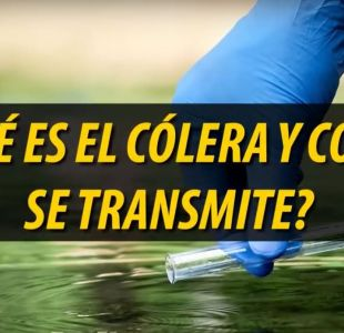 [VIDEO] ¿Qué es el cólera y cómo se transmite?
