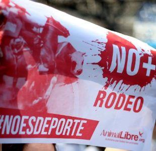 [VIDEO] Marcha animalista en contra del rodeo reunió a más de 5 mil personas en Santiago