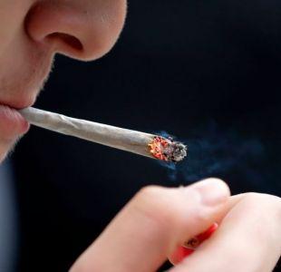 ¿Puede la marihuana ayudar a solucionar una de las mayores crisis de salud pública en EEUU?