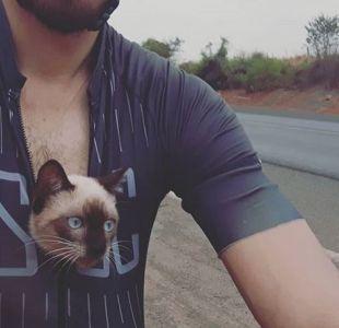 Gato rescatado por ciclista en Brasil
