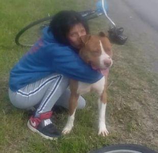Mujer se encadenó para que le devolvieran a su perro que estaba preso