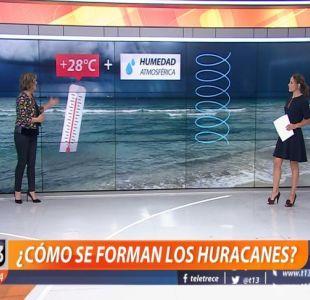 [VIDEO] ¿Cómo se forman los huracanes? Michelle Adam lo explica