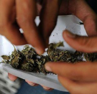 Marihuana en México: qué implica el fallo de la Corte Suprema y qué dudas plantea su decisión