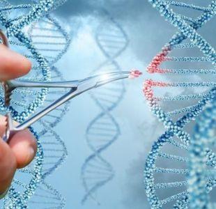 La carrera por liderar el revolucionario y lucrativo mercado de la edición genética en humanos