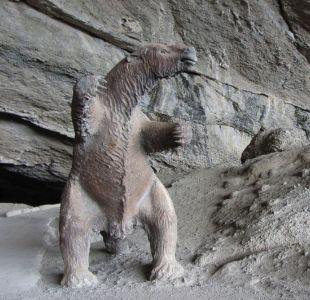 Gobierno confirma que negociará el regreso del milodón magallánico a Chile