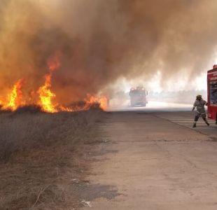 [VIDEO] Bomberos logra extinguir incendio en Parque Bicentenario de Cerrillos