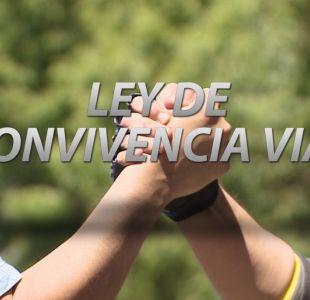 [VIDEO] Las dudas sobre la Ley de Convivencia Vial