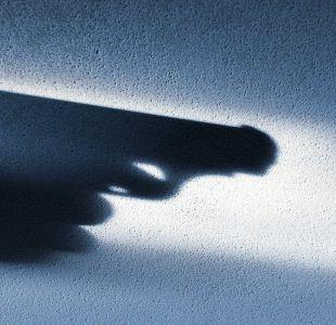 Profesor de Harvard cita 150 estudios que afirman que es un mito tener un arma para defensa personal