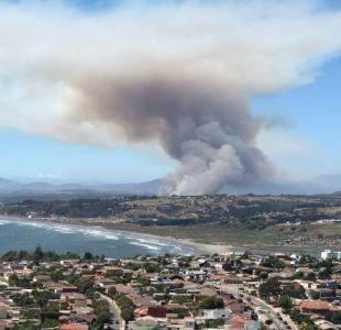 Alerta Roja comunal por incendio forestal en Mantagua