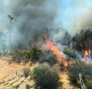 [FOTOS] Dos incendios forestales afectaron la zona centro del país