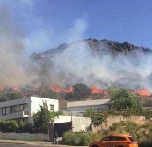 [FOTOS Y VIDEO] Incendio forestal en Lo Barnechea consumió al menos 1,5 hectáreas