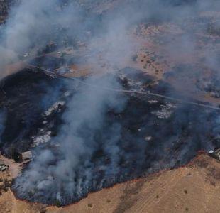 Onemi decreta alerta roja por incendio forestal en Puente Alto