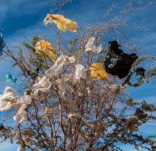 Por qué en Chile creen que prohibir las bolsas de plástico perjudicará a los más pobres