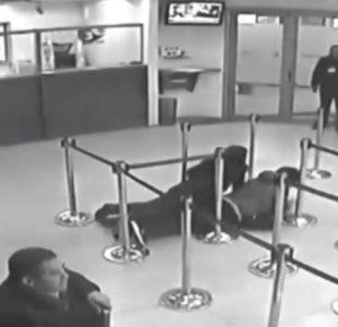 [VIDEO] BancoEstado de Linares desvincula a responsables de autorizar polémico simulacro de asalto