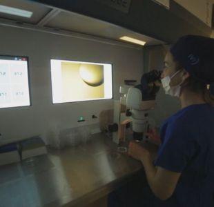 [VIDEO] Ofrecen a trabajadoras congelar óvulos