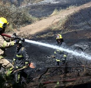 Onemi decreta alerta temprana preventiva por incendios forestales en la Región Metropolitana