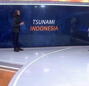 [VIDEO] Marcelo Lagos explica las posibles causas del tsunami en Indonesia