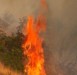 [VIDEO] Incendios forestales: Más de 9 mil hectáreas quemadas