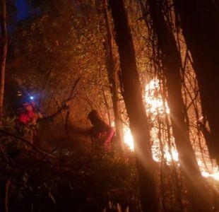 Decretan Alerta Roja en Pirque por incendio forestal