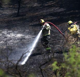Declaran alerta roja comunal en Melipilla por incendio forestal