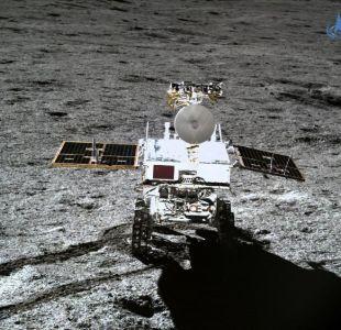 [FOTOS] Sonda Change-4 consigue por primera vez la germinación de una semilla en la Luna