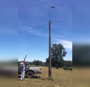 [VIDEO] Agricultores disparan a bandera mapuche