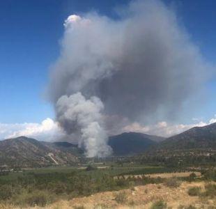 Declaran alerta roja por incendio forestal en Machalí
