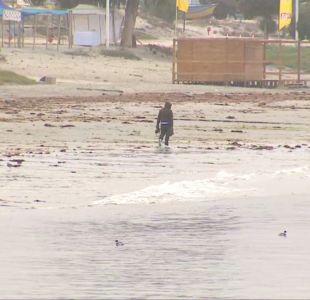 "[VIDEO] Turistas ""escapan"" de Coquimbo"