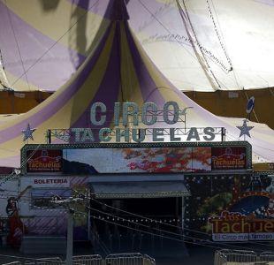 """El """"Farkas de los pobres"""" invita a más de 800 niños para que vayan gratis al circo"""