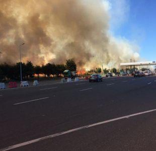[VIDEO] Incendio forestal se registra en cercanías a plaza de peaje en la Región de La Araucanía