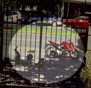 [VIDEO] Grave accidente en Providencia: motorista casi fue ahorcado por un cable