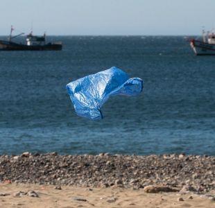 [VIDEO] Las alternativas a las bolsas plásticas