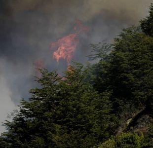 Onemi reporta 27 incendios forestales activos en siete regiones del país